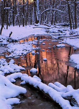WarmestReflections-Print
